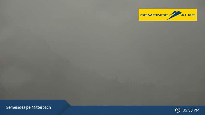 Gemeindealpe Mitterbach Blick auf den Erlaufsee